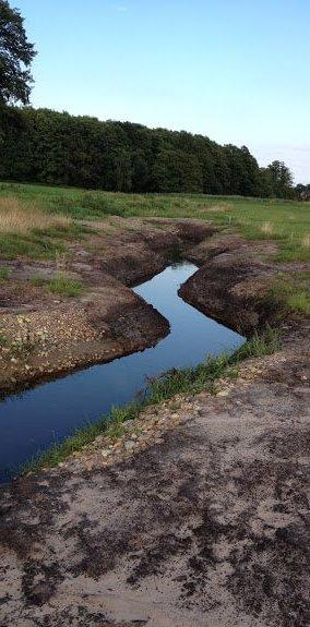 Naturnahe Umgestaltung an der Delme (Projekt: 5087)